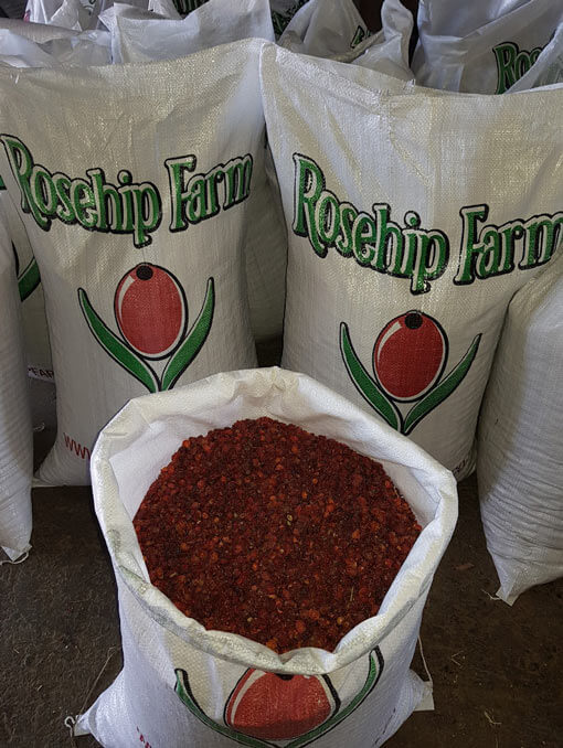 rosehip-farm bulk rosehips in bags