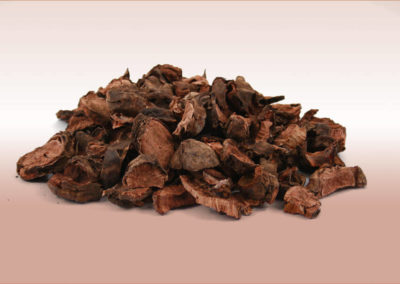 Pelargoniums-Sidoides-5