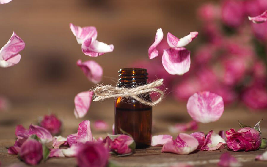 Rose hip oil – made for natural beauty
